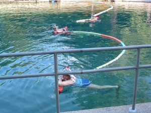 Swimming with nets