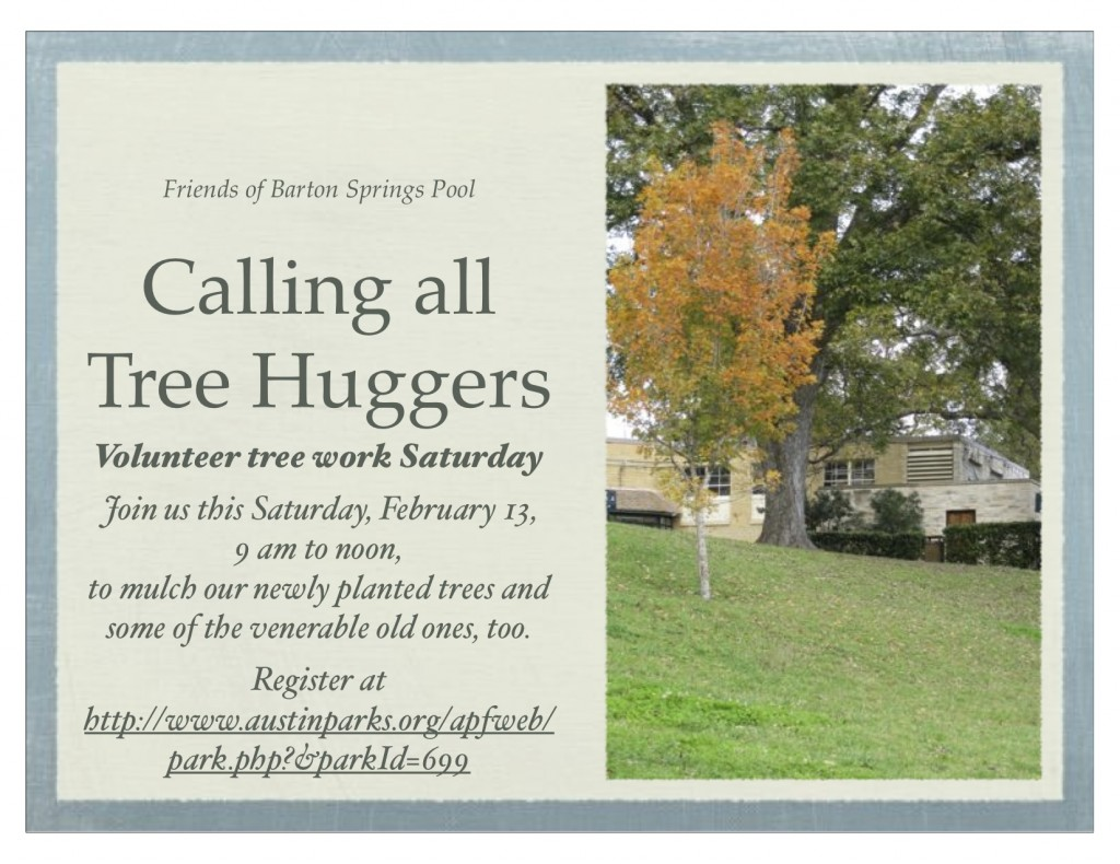 Calling all Tree Huggers